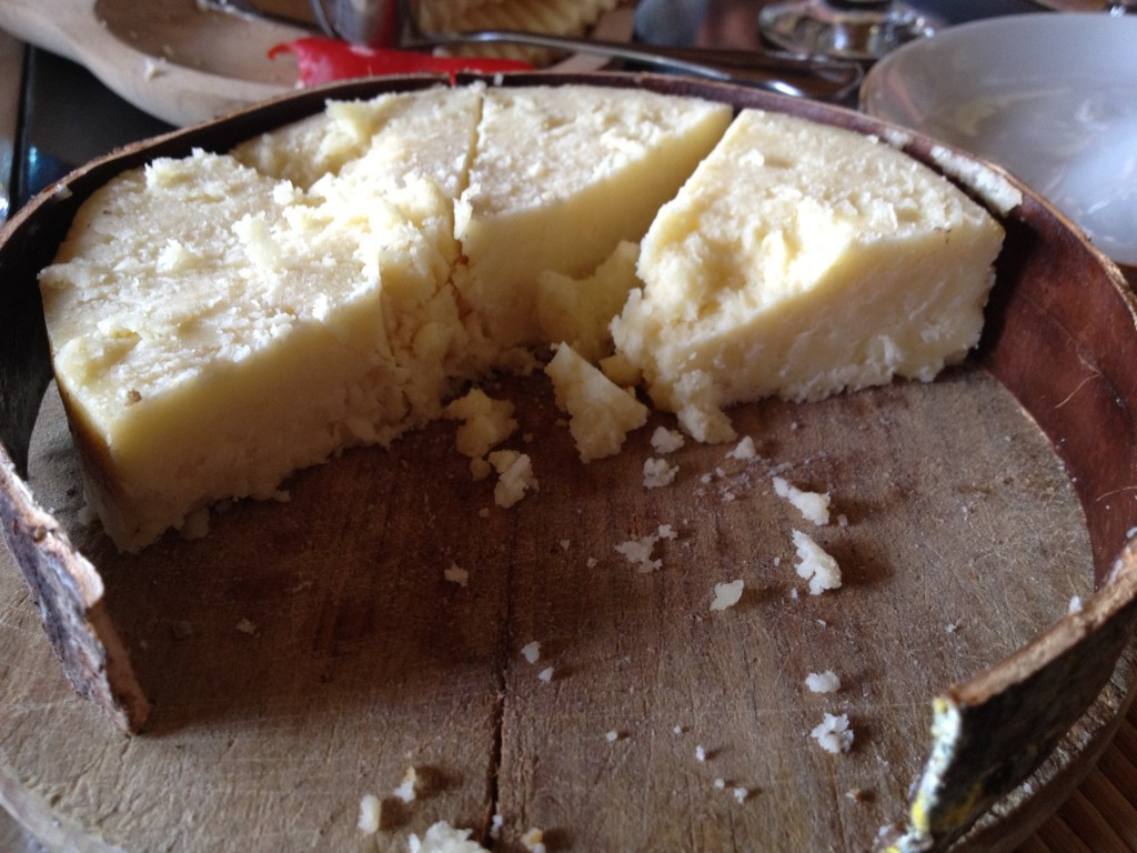 Brinza de burduf (Romanian sheep's milk cheese)